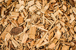 THEMENBILD - Hackschnitzel. Als Brennstoff finden Hackschnitzel vor allem Verwendung in Hackschnitzelheizwerken, um damit Strom und erneuerbare Energie herzustellen. Aufgenommen am 7. September in Murau // THEME IMAGE - Wood chips. Traditional use of woodchips is as a solid fuel for heating in buildings or in energy plants for generating electric power from renewable energy. Pictured on 2013/09/07 in Murau, Austria. EXPA Pictures © 2013, PhotoCredit: EXPA/ Sandro Zangrando