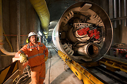 Melbourne Water Northern Sewer Project, DeChene Reserve,