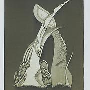 "Title: Environ<br /> Artist: Esther Sullivan<br /> Date: 2014<br /> Medium: Intaglio<br /> Size: 15 x 18""<br /> Instructor: Terri Goodhue<br /> Status: Available<br /> Location: HLC Storage"