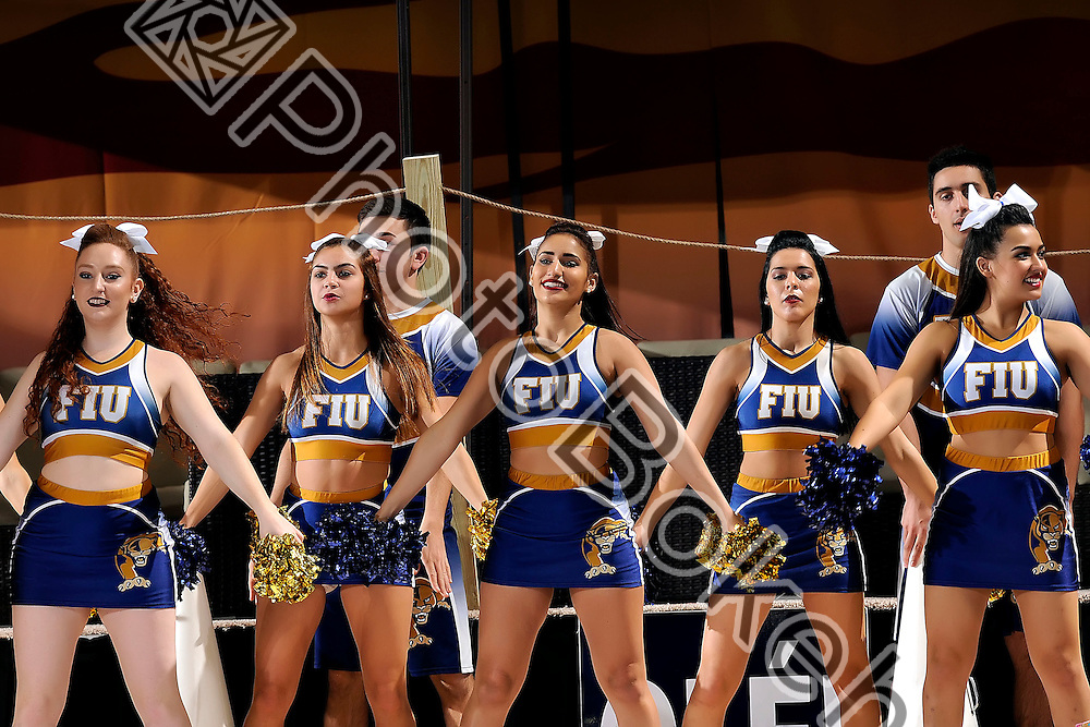 2016 January 23 - FIU Cheerleaders performing for fans at FIU Arena, Miami, Florida. (Photo by: Alex J. Hernandez / photobokeh.com) This image is copyright by PhotoBokeh.com and may not be reproduced or retransmitted without express written consent of PhotoBokeh.com. ©2016 PhotoBokeh.com - All Rights Reserved