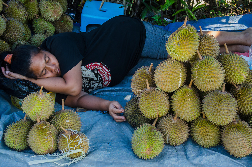 Durian for Sale (Durio sp.)<br /> Vegetable Market<br /> Biak Island<br /> West Papua<br /> Indonesia