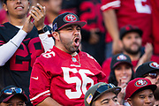 San Francisco 49ers fans celebrate a win over the New York Giants at Levi's Stadium in Santa Clara, Calif., on November 12, 2017. (Stan Olszewski/Special to S.F. Examiner)