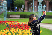 Mannheim. 14.04.14 Wasserturm. Reinigungs- und Wartungsarbeiten am Brunnen. Die Blumenbete mit Tulpen sind angelegt. Ostern startet in Mannheim mit den Fontänen am Wasserturm.  <br /> <br /> Bild: Markus Proßwitz 14APR14 / masterpress