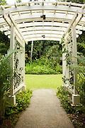 Garden arbor trellis in Haiku Gardens, Kaneohe, Hawaii
