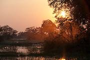 The low sun illuminates the Okavango Delta, Botswana
