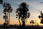 Picture of Santa Monica, Los Angeles, California