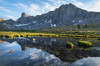 Pronghorn and Dragon Head Peaks reflected in pond near Lee Lake, Bridger Wilderness. Wind River Range, Wyoming