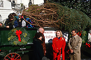 First lady Hillary Clinton smiles as the White House Christmas tree arrives by horse drawn carriage November 27, 1996 in Washington, DC. The National Christmas Tree Association presented Mrs. Clinton with the tree, an 18 1/2-foot Colorado Blue Spruce, grown in Coshocton, Ohio, which will grace the White House Blue Room during the Christmas season.