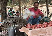 Preparing chickens for sale at a local marked in Assam, India.