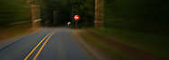 an abstract image of a road in the forest  approaching a stop sign panorama