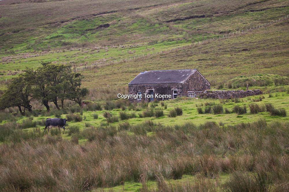 cottage in Northern Ireland