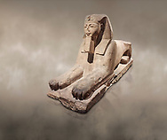 Ancient Egyptian Sphinx statue, sandstone, New Kingdom, early 19th Dynasty (1292-1250), Karnak, Temple of Amon. Egyptian Museum, Turin. <br /> <br /> The Phatoah and queen could be represented by Sphinx statues and by associating human faces with the body of a lion the Egyptians combined the strength of the animal that was connected to the sun god with human inetelligence. In this guardian rols sphinxes were generally placed facing each other on either side of temple gates, processional ways or dooways inside the temple. . Drovetti Collection. C1408 .<br /> <br /> If you prefer to buy from our ALAMY PHOTO LIBRARY  Collection visit : https://www.alamy.com/portfolio/paul-williams-funkystock/ancient-egyptian-art-artefacts.html  . Type -   Turin   - into the LOWER SEARCH WITHIN GALLERY box. Refine search by adding background colour, subject etc<br /> <br /> Visit our ANCIENT WORLD PHOTO COLLECTIONS for more photos to download or buy as wall art prints https://funkystock.photoshelter.com/gallery-collection/Ancient-World-Art-Antiquities-Historic-Sites-Pictures-Images-of/C00006u26yqSkDOM