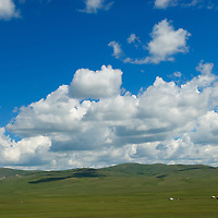 """MONGOLIA.  Sheep, goats and yaks graze between felt-lined """"gers"""" (yurts) on hillsides north of Muren in Hovsgol district."""