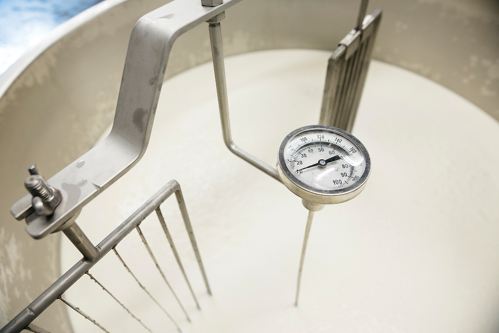 Temperature gauge in the cheese making vat