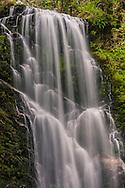 Berry Creek Falls, Big Basin State Park, Santa Cruz County, California