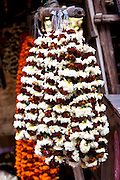 Marigolds in ceremonial Brahmin garlands at Mehrauli Flower Market, New Delhi, India