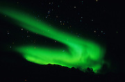 Aurora Borealis & Stars - Alaska