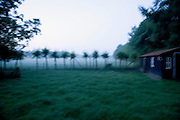 blurry early morning rural Dutch landscape view