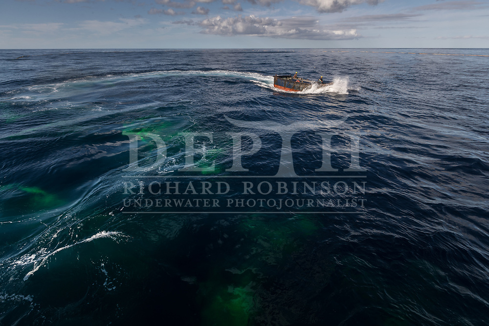 """A skiff tows the end of the net back to the purse seine. The net is then closed underneath the school a process called """"pursing"""" preventing fish from escaping by swimming downward. <br /> Shot on assignment for New Zealand Geographic Issue: 170 July August 2021.<br /> Read the Feature: https://www.nzgeo.com/stories/billion-dollar-fish/<br /> Photograph Richard Robinson © 2021.<br /> Rights managed image. No Reproduction without prior written permission."""