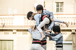 November 20, 2016 - Barcelona, Catalonia, Spain - A young member of the 'Castellers de Poble Sec' climbs to the top of one of their human towers during a 'diada castellera' at Barcelona's Gracia quarter (Credit Image: © Matthias Oesterle via ZUMA Wire)