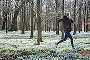 © Licensed to London News Pictures. 18/02/2015. Welford, UK Felicia Puxley and her dog Tumble, the Yorkshire Terrier, take a walk through snowdrops in bloom at Welford Park in Berkshire today 18th February 2015. The Galanthus Nivalis display at Welford Park is in a beech wood covering approximately 5 acres alongside the River Lambourn. Photo credit : Stephen Simpson/LNP