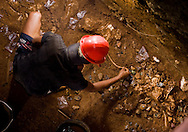 A Manggarai worker reconstructs a Stegodon rib bone. Hobbit tools densely scattered around the remains indicate that this was an intensively used butchering site at Liang Bua cave, discovery site of the Flores hobbit, Homo floresiensis