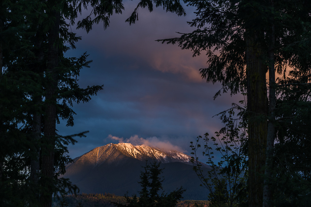 Blue Mountain at sunset, April, view from Mount Pleasant, Olympic National Park, Washington, USA