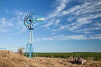 MOLINO DE VIENTO PINTADO CON LOS COLORES DE LA BANDERA NACIONAL ARGENTINA, ALREDEDORES DE GENERAL VILLEGAS, PROVINCIA DE BUENOS AIRES, ARGENTINA