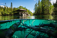 The clear, blue-green water of the Big Spring - Kitch-iti-kipi in Michigan's Upper Peninsula