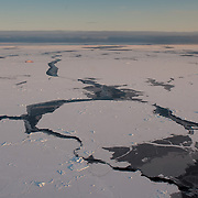 Newly formed ice covers the waters of the Arctic Ocean.
