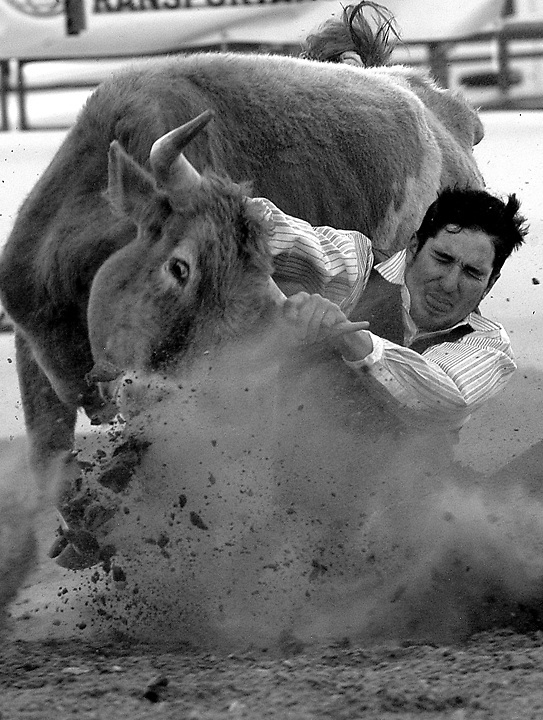 Tanner Robinson wrangles a steer to the ground during the annual Rodeo at the New Mexico State University rodeo arena...