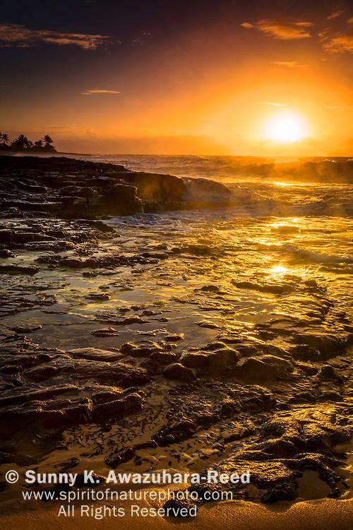 Wave cascading down the rocky shore at sunrise. Golden lights on the rocks. Sandy Beach. Oahu Island, Hawaii.