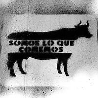 """Translation: """"WE ARE WHAT WE EAT""""<br /> <br /> Buenos Aires, Argentina March 2006<br /> Protest, resistance and memory:  The Stencil images in Buenos Aires. <br /> The stencil art takes the streets of the Argentinian capital. Urban artists bomb in silence the city with messages that combine political and social content, imagination and irony.<br /> Photo: Ezequiel Scagnetti"""