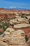 Canyonlands National Park in Utah