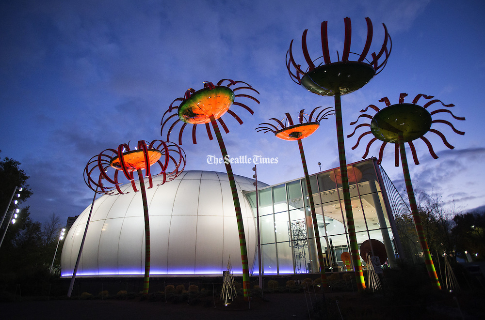 """""""Sonic Bloom,"""" solar-powered flower sculptures by artist Dan Corson, light up in front of the Boeing IMAX Theater at the Pacific Science Center in the Lower Queen Anne neighborhood. (Lindsey Wasson / The Seattle Times)"""