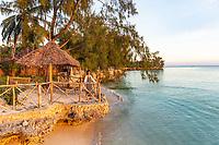 one caucasian woman looking at sunset Kizimkazi in Unguja aka Zanzibar Island Tanzania East Africa