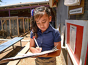 Manzo Elementary School student, Dominique Hernandez, 9, works in the school's organic garden, Tucson, Arizona, USA.  The school was the first in TUSD to be certified for garden to cafeteria food consumption and first in the state of Arizona for rainwater harvesting and composting. The  garden projects in the district work with internationally known Biosphere2 and the University of Arizona. The garden was built in conjunction with the National Park Foundation's First Bloom program. The project is supported in part by a USDA Farm-to-School grant.  Named Best Green School 2012 by the U.S. Green Building Council, Manzo is the only K-5 public school in the United States to receive that honor in response to their environmental initiatives.