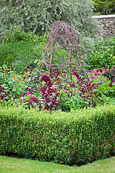 The parterre beds at Parham House with Amaranthus paniculatus 'Red Fox' and Tithonia rotundifolia 'Torch'