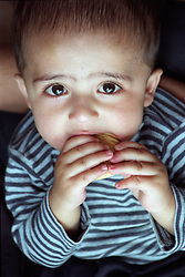 Portrait of young boy eating biscuit,