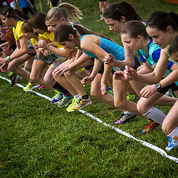 20140315: SLO, Athletics - Slovenian Cross Country Championships 2014
