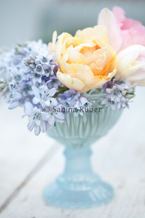 Flower arrangement with bluebells and pink and apricot double tulips