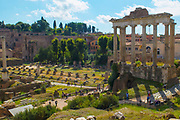 Ruins of the Roman Forum, or plaza, this space, containing various government buildings was the center of daily life in Rome.