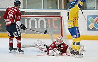 Ishockey , Get-Ligaen<br /> 25.02.14<br /> Hamar OL-Amfi<br /> Storhamar v Lillehammer  4-1<br /> Foto : Dagfinn Limoseth , Digitalsport<br /> Joe Fallon , Lillehammer og Eirik B. Skadsdammen , Storhamar jubler