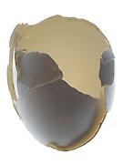 empty broken egg shell