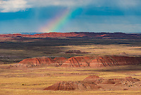 A partial rainbow hangs above the buttes and mesas of eastern Arizona. On this early November afternoon, scattered rain showers drifted across the landscape. The shadows and patches of sunlight revealed the full range of colors that the Painted Desert is known for. This desert was once a forest with a much wetter climate, and a wide variety of wildlife. But now it's filled with petrified logs and fossils. Also found in Petrified Forest National Park are many archaeological sites including pueblos, petroglyphs, and other artifacts, some of which are thousands of years old.