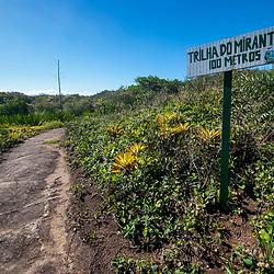 """""""Trilha do Mirante no PEPCV (Paisagem) fotografado em Guarapari, Espírito Santo -  Sudeste do Brasil. Bioma Mata Atlântica. Registro feito em 2008.<br /> <br /> <br /> <br /> ENGLISH: Lookout Trail on PCVSP photographed in Guarapari, Espírito Santo - Southeast of Brazil. Atlantic Forest Biome. Picture made in 2008."""""""
