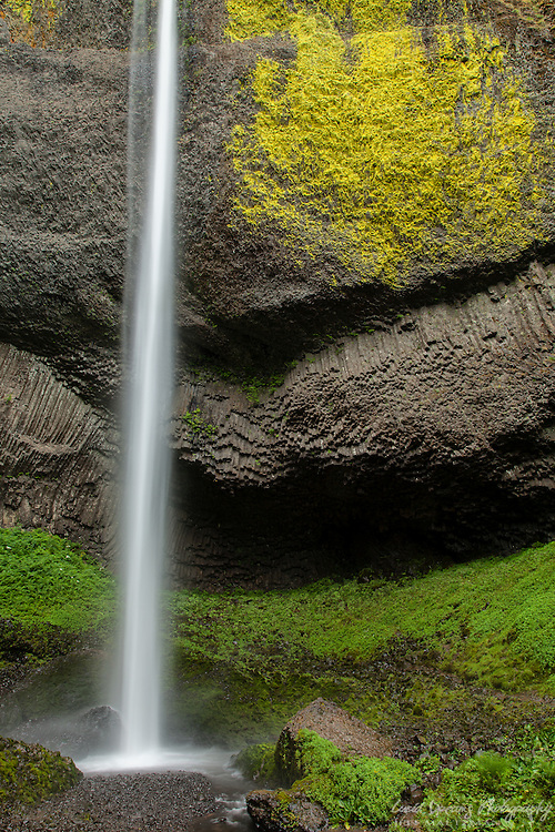 Latourell Falls in the Columbia River Gorge, near Portland, Oregon, is a very tall and thin waterfall.  When observed for some time it takes on the appearance of a meandering ribbon of water.  Verdant vegetation and bright lichens add a punch of color to the scene
