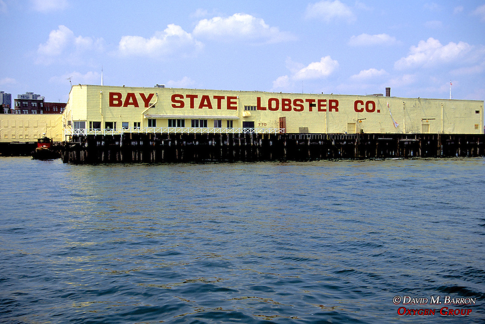 Bay State Lobster Company