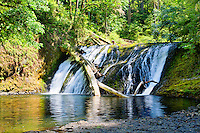 Lower North Falls in Silver Falls State Park