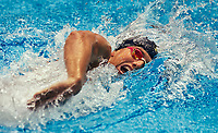 Swimm World Cup